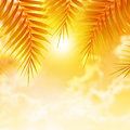 Palm leaves on sunset background beautiful orange luxury tropical resort day spa beach the island holiday and vacation concept Royalty Free Stock Images
