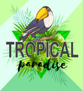 Palm leaves and toucan bird Royalty Free Stock Photo