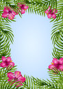 Palm leaves and tropical flower background. Royalty Free Stock Photo