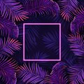 Palm neon leaves poster, vector tropic vibrant purple design illustration, jungle summer disco party frame Royalty Free Stock Photo