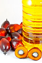 Palm olein oil with oil palm fruits Royalty Free Stock Photo