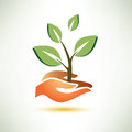 Palm and plant symbol ecology concept Stock Photo