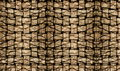 Palm tree bark texture matting background Stock Images