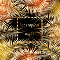 Palm tree branches with frame on black background. Royalty Free Stock Photo