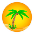 Palm tree button Royalty Free Stock Photo