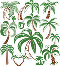 Palm Tree Collection Stock Photos