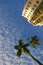 Palm tree and condominium with blue sky Stock Photos