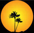 Palm tree evening background Royalty Free Stock Images