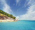 Palm tree forest beach and mountains thailand Royalty Free Stock Photos