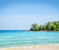 Palm tree forest beach and mountains thailand Royalty Free Stock Photo