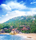 Palm tree forest beach and mountains thailand samui island Stock Image