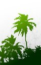 Palm tree illustration of in grungy background Stock Photo
