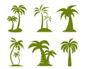 Palm tree image on white Royalty Free Stock Photography