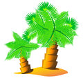 Palm tree island illustration of cartoon small with two on it sand on white background Royalty Free Stock Photo