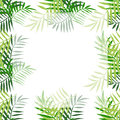 Palm tree leaves border 4