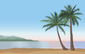 Palm tree on the ocean beach. Nature floral landscape Tropical b Royalty Free Stock Photo