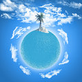 Palm tree on ocean globe Royalty Free Stock Photo