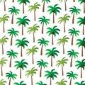 Palm tree pattern on white