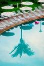 Palm tree reflection Royalty Free Stock Photo