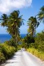 Palm tree road Royalty Free Stock Photo