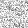 Palm tree seamless pattern colorless vector illustration Stock Photos