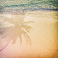 Palm tree shadow on the sandy beach with ocean wave Royalty Free Stock Photo