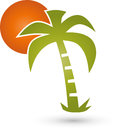 Palm tree and sun, turism and travel logo