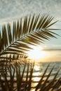 stock image of  Sunrises at sea