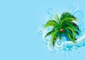 Palm tree vector abstract tropical background with Royalty Free Stock Image