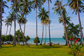Palm trees in a basic resort on rabbit island cambodia Stock Image