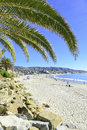 Palm trees at the beach on sunny day southern california usa Stock Photos