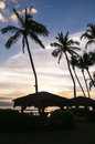 Palm trees on beach at sunset the silhouette of and grass huts a hawaiian Stock Photography