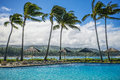Palm trees blowing windy day north shore island oahu hawaiian islands ripples swimming pool resort hotel property foreground waves Stock Photography