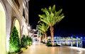Palm trees and the buildings in the night lights in Marina Porto Royalty Free Stock Photo