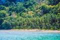 Palm trees on Cadlao Island, El Nido, Palawan, Philippines Royalty Free Stock Photo