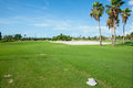 Palm trees cast shadow over golf course fairway with sand bunker Royalty Free Stock Photo