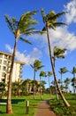 Palm trees and condos, Maui Royalty Free Stock Photo