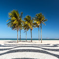 Palm trees and the iconic Copacabana beach mosaic sidewalk