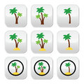 Palm trees exotic holidays on beach colorful icons set collection of green tree shapes isolated white Royalty Free Stock Photos