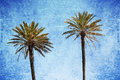Palm trees with grunge texture Royalty Free Stock Photo