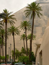 Palm trees and Luxor in Vegas Royalty Free Stock Photo