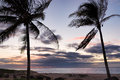 Palm trees ocean and sunset in Hawaii Royalty Free Stock Photo