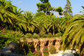 Palm trees at Parc Guell Royalty Free Stock Photography