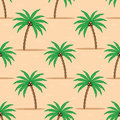 Palm trees on the sand.