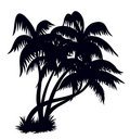 Palm trees silhouette 2 Royalty Free Stock Image