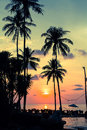 Tropical beach at amazing sunset
