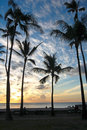 Palm Trees at Sunset Royalty Free Stock Photo