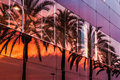 Palm trees and sunset sky reflected in the modern building Royalty Free Stock Photo