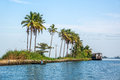 A man driving the slick fishing boat in backwaters of Kerala having lush green palm trees in background