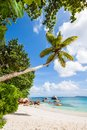 Palm at tropical beach with exotic trees and and turquoise sea under a blue sky seychelles praslin Stock Photo